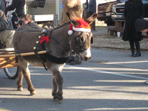 December 2010 042